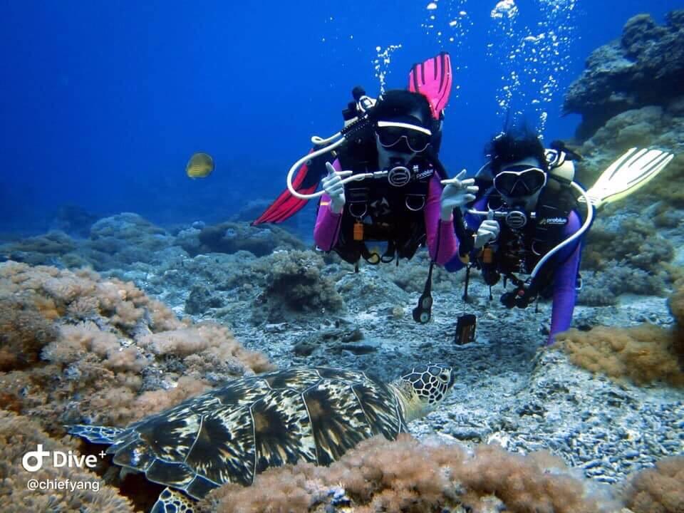 水肺潛水行程